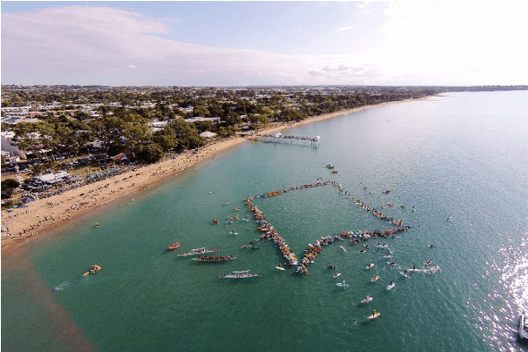 Paddle out for the Whales